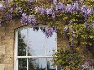 Sash Window Example
